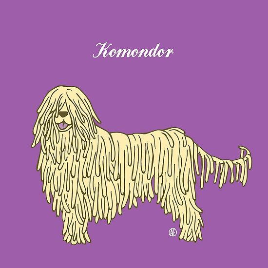 Komondor by AleFlavia
