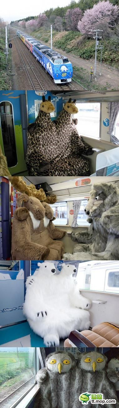 Train that takes people to Asahiyama Zoo in Hokkaido, Japan | both creepy & cute