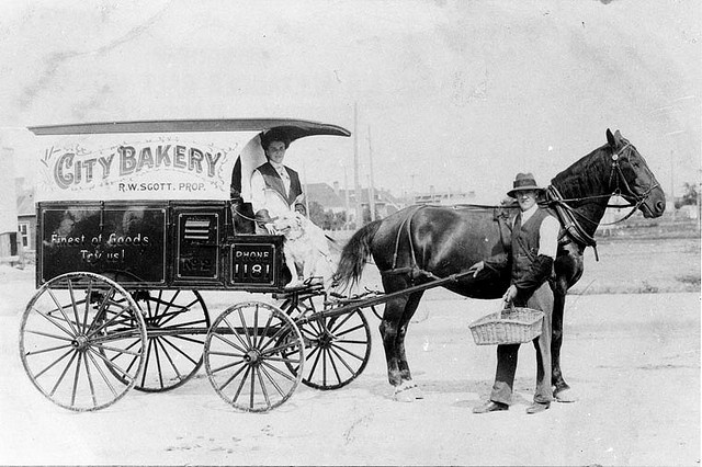 City Bakery horse drawn delivery wagon. R.W. Scott, proprietor, standing beside the horse and Mrs. Scott and a dog are sitting on the carriage seat, 1914. Lethbridge, Alberta