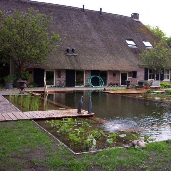 Grote zwemvijver bij boerderij. Foto net na aanleg en gepind door Gilbert de Jong.