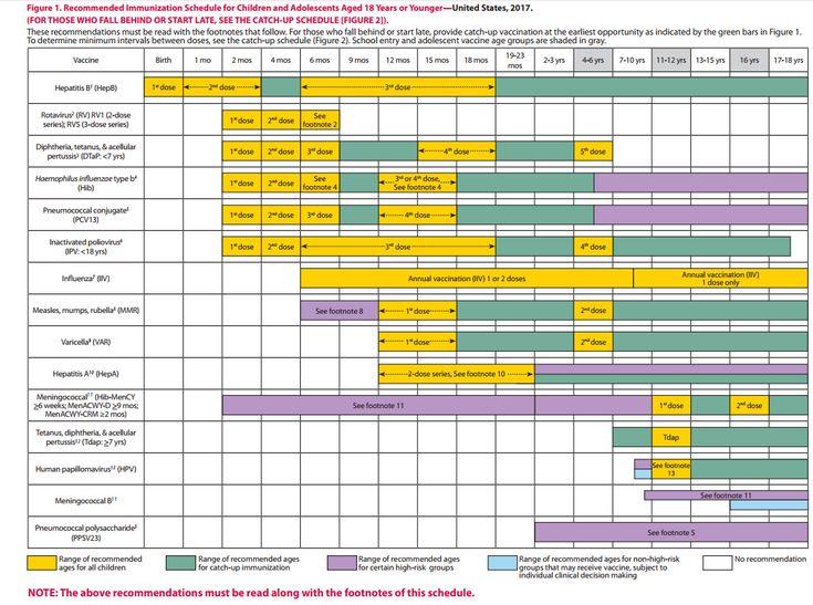 Calendario vacunal EEUU 2017