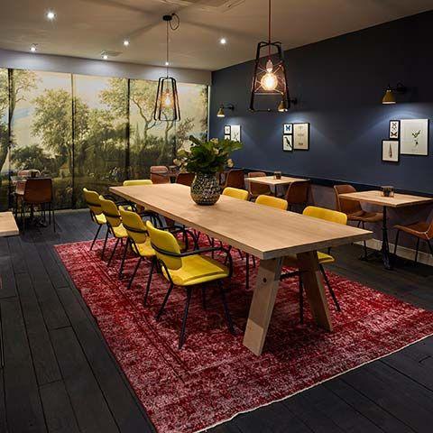 Lichtkooi dutch design ontwerp Studio Hamerhaai Hotel Lion d'Or Haarlem interior interieur cafe lounge