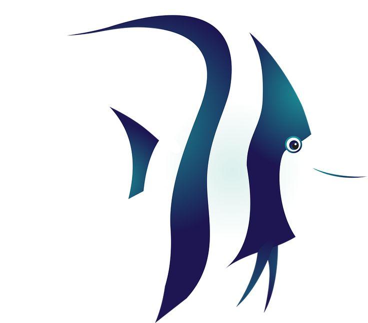 Рыба, Тропические Рыбы, Море