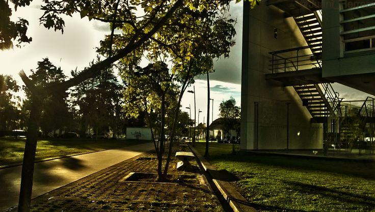 En la Universidad Nacional de Colombia :)