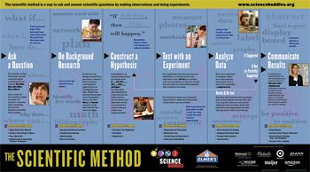 FREE Scientific Method poster from Science Buddies site.
