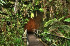 Hike through Thurston Lava Tube, Hawaii Volcanoes National Park, Big Island, Hawaii - Bucket List Dream from TripBucket
