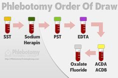 Phlebotomy Order of Draw #phlebotomy #phlebotomist