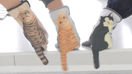 cat-gloves-touch-screen-felissimo-you-more-gif-2