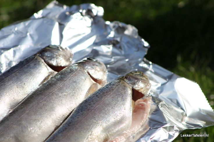 Vis bereiden; De vele mogelijkheden op een rij | Lekker Tafelen