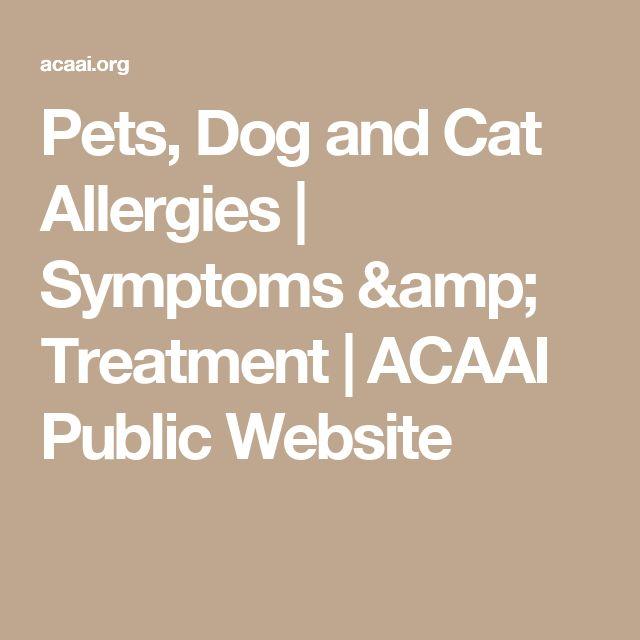 Pets, Dog and Cat Allergies | Symptoms & Treatment | ACAAI Public Website