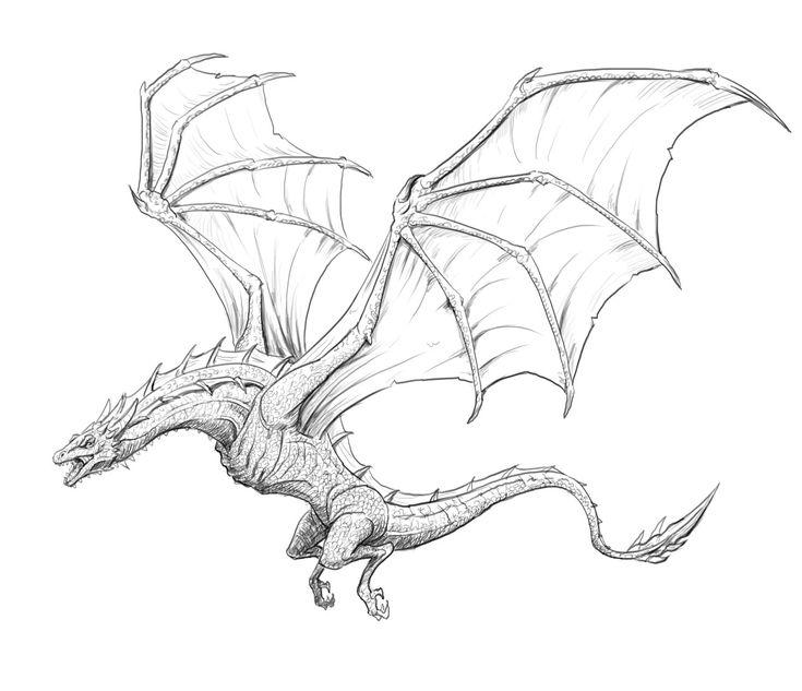 они камеру картинки летящего дракона карандашом случае необходимости перекрывается