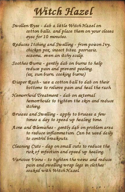 Uses of Witch Hazel