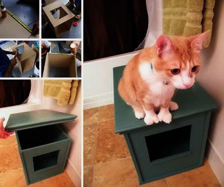 Ways to Hide Litter Box