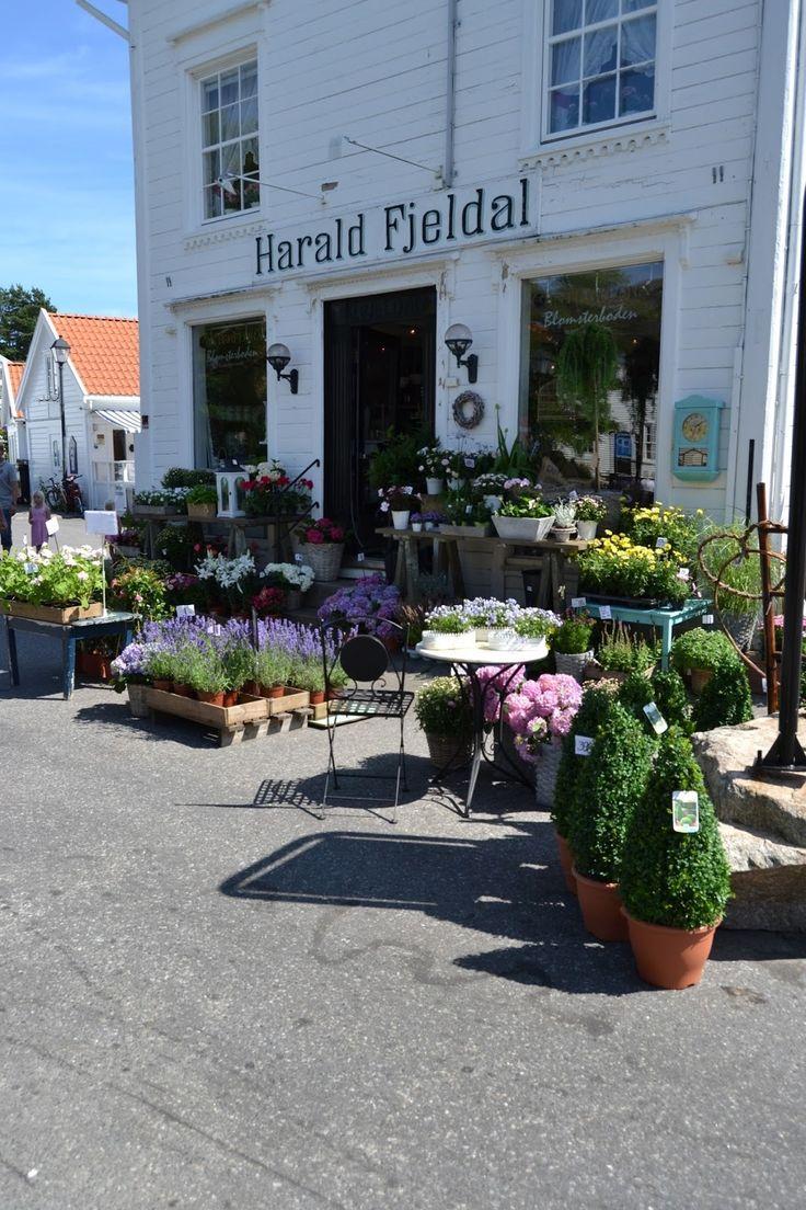 Harald+Fjeldal+i+Lillesand+Foto_Elisabeth+Høibo.jpg 1 066 × 1 600 bildepunkter