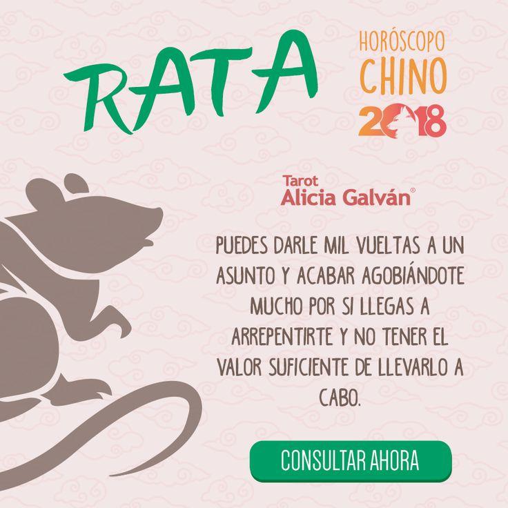 ¿Quieres saber qué te deparará el año nuevo chino? Descúbrelo aqui 👇🐶 #rata #horóscopochino #añodelperro