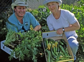 Gardeners with produce - fact sheets