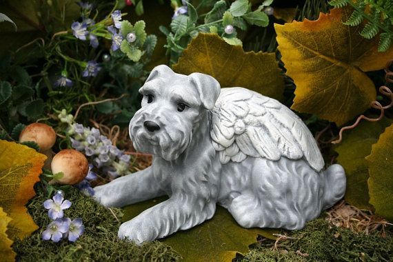 Schnauzer Dog Angel Statue - Pet Memorial - Garden Decor