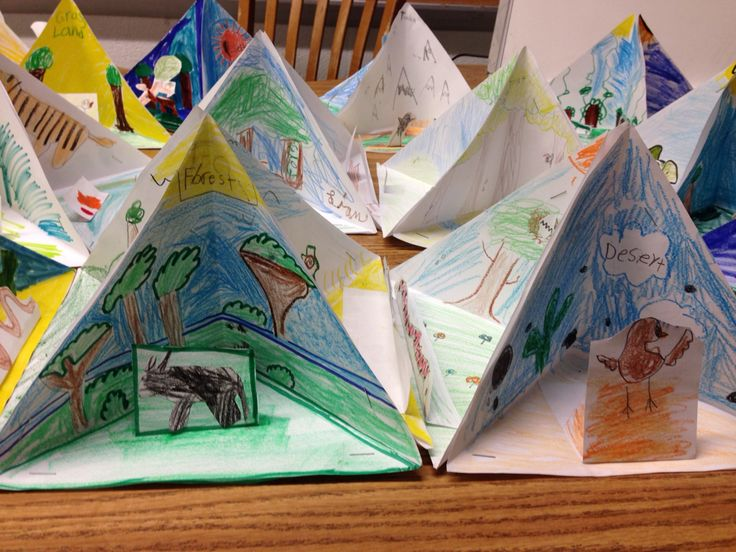 "While studying ecosystems in science, I had my 4th grade students make ""trioramas"" of 4 different habitats. Complete with living & non-living elements."