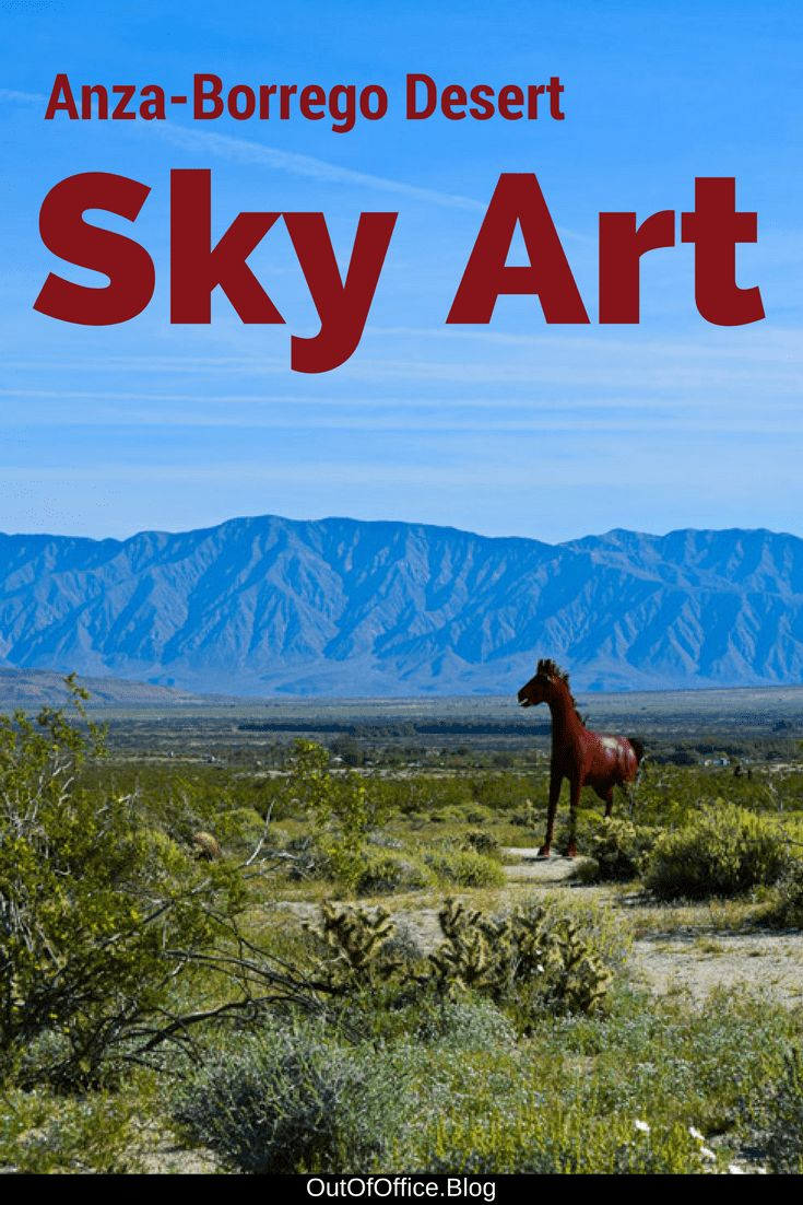 A day trip to itinerary to California's Anza-Borrego Desert for the desert super bloom and Sky Art with a detour to Salvation Mountain and Salton Sea.