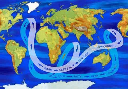 World map showing major ocean currents by salinity levels. Warm, shallow water is less salty than deeper, colder water.