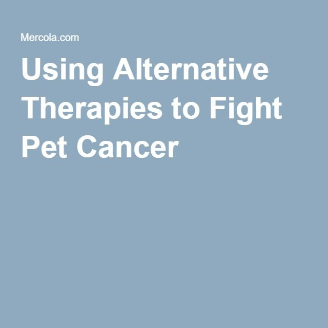 Using Alternative Therapies to Fight Pet Cancer