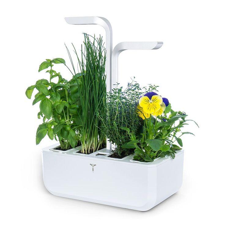 150 le potager d 39 int rieur autonome v ritable cultivez vos herbes aromatiques fleurs. Black Bedroom Furniture Sets. Home Design Ideas