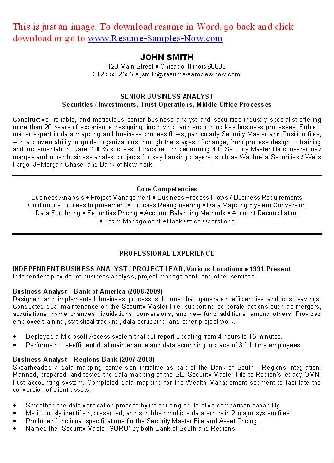 Good Examples Of A Resume Business Analyst Resume Examples