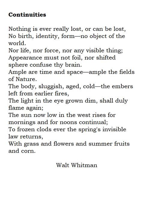 "an overview of the transcendental themes in the poetry of walt whitman The whitmanian moment in the us construction of representative literariness  walt whitman, poetry and  for an overview of this ""anxiety of reception."