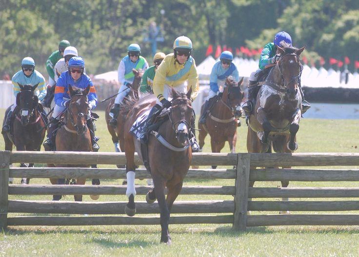 82nd radnor hunt race draws thousands to malvern racing