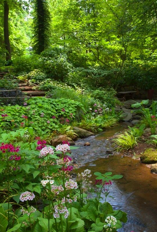 Beautiful landscaped stream in woodland garden
