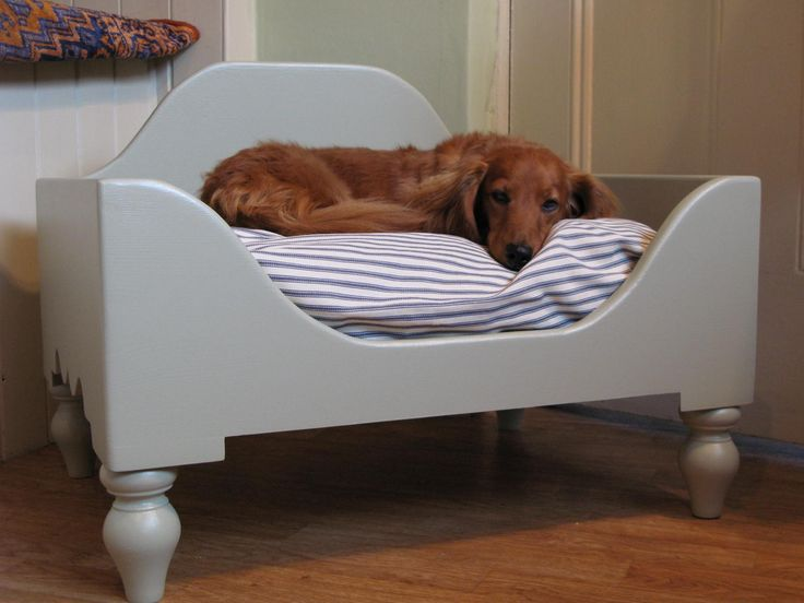 Beautiful Dog Bed For Your Cute Dog: Lovely Interior With Elevated Dog Bed In White Wall Side Finishing With Curved High