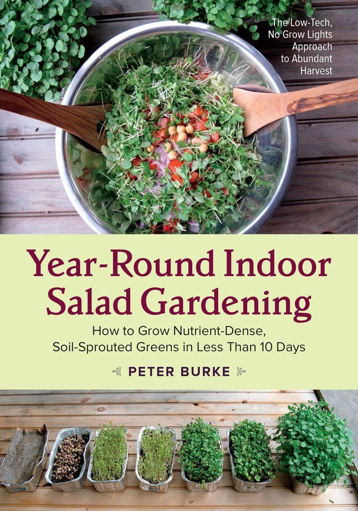 Best 25+ Indoor Grow Lights Ideas On Pinterest | Grow Lights, Grow Lights  For Plants And Growing Plants Indoors