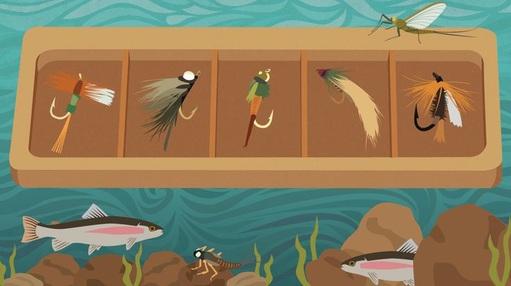 Our fishing expert will teach you which flies to use, and when. Find out the basics of fishing with nymphs, wet flies, topwater lures, and more.
