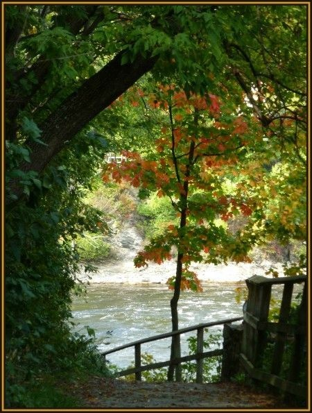 Dans un sentier de ville près de la gorge de la rivière Magog....Sept 25th..we ca see a bit of red already!