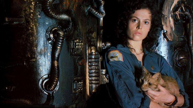 Az Alien egy macskás vígjáték | A Hetedik Sor Közepe