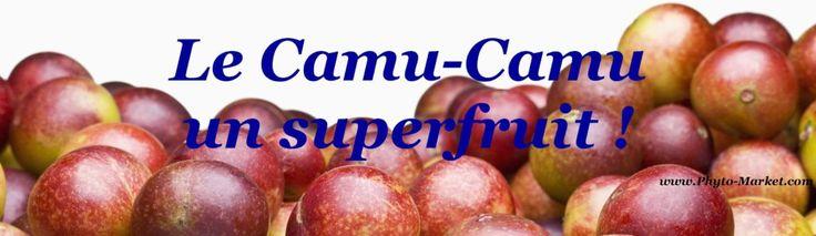 """Résultat de recherche d'images pour """"Le camu-camu le fruit"""""""