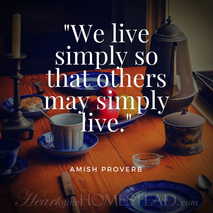 "Old Amish Proverb - ""We live simply so that others may simply live."""