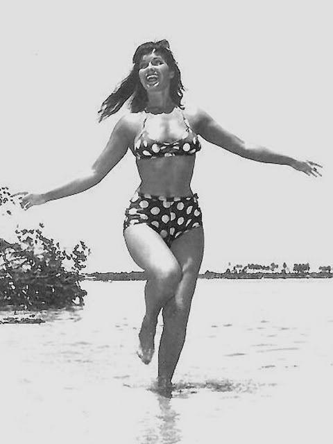 Boobs Amy Landecker nudes (36 photos) Bikini, Twitter, legs