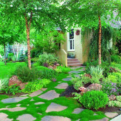 Love the moss.: Gardens Beds, Frontyard, Gorgeous Gardens, Gardens Paths, Front Yard, Stones Paths, Irish Moss, Step Stones, Landscape Ideas