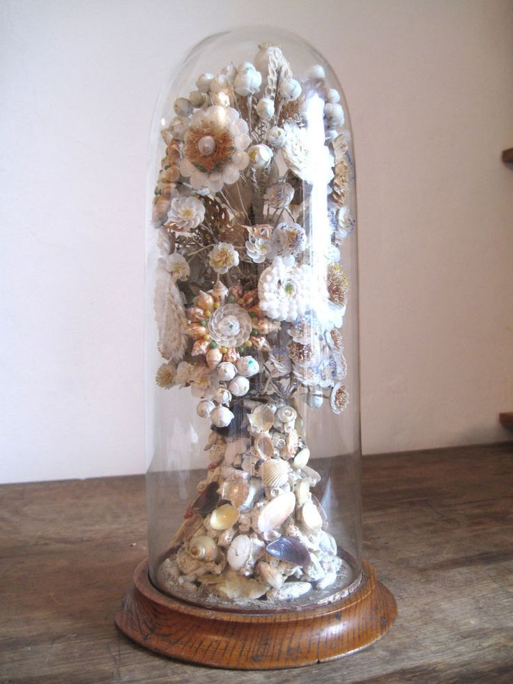 sailors valentine shell flowers glass dome cloche bell jar 19th century