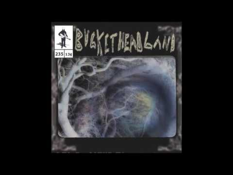 Buckethead - Pike 235 - Oneiric Pool