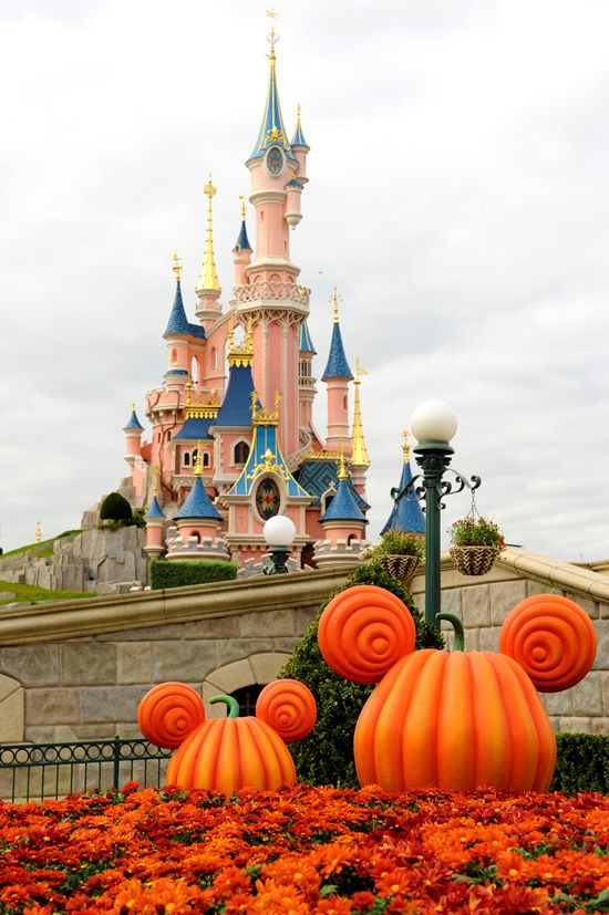 Disney Paris in October! Hope those pumpkins stay till we get there in Nov!! How cute!