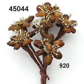 45044 Fiore di caffè c.chiodi di garofano