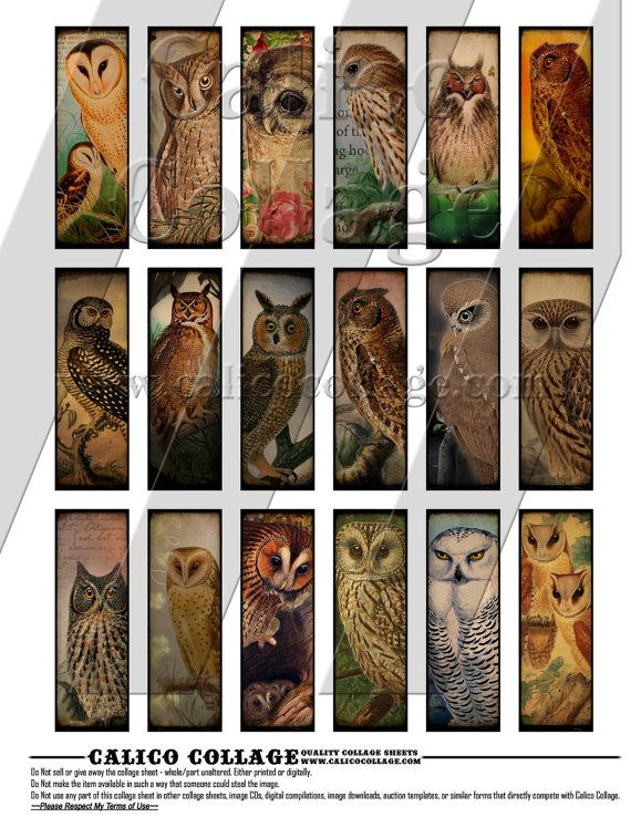 NEW Majestic Owls  Digital Collage Sheet  1x3 by calicocollage, $3.75