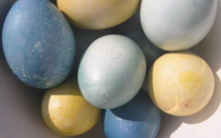 Ausführliche Anleitung zum Eierfärben mit Naturfarben plus Übersichtstabelle zu Farbtönen-Material