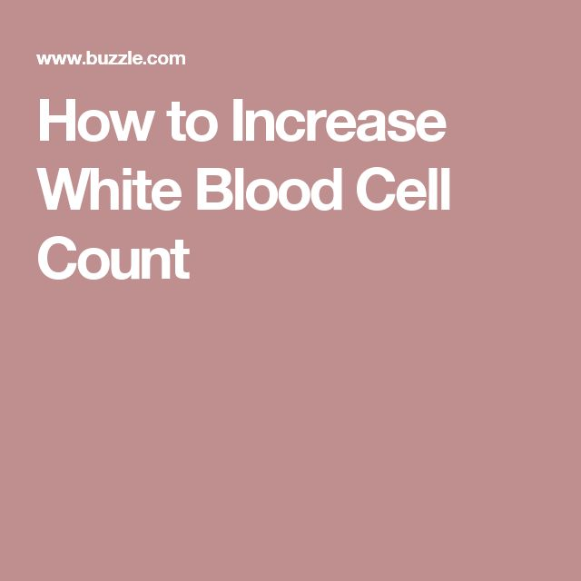 19 best white blood cells images on blood