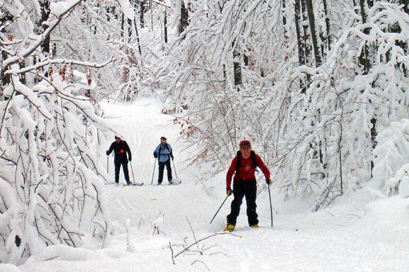 Cross-country skiing around Toronto