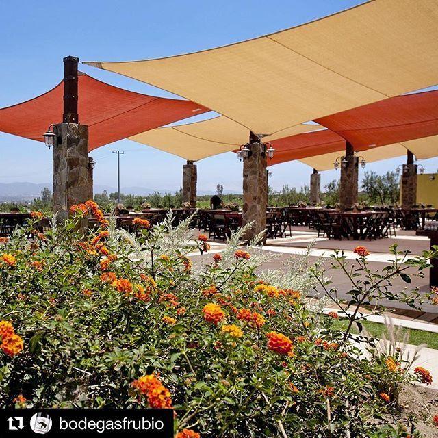 La Ruta Vcc Larutavcc Fotos Y Videos De Instagram Outdoor Structures Outdoor Pergola