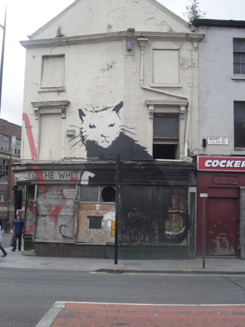 Graffiti Cat, Liverpool:    This cat was painted by the graffiti artist Banksy