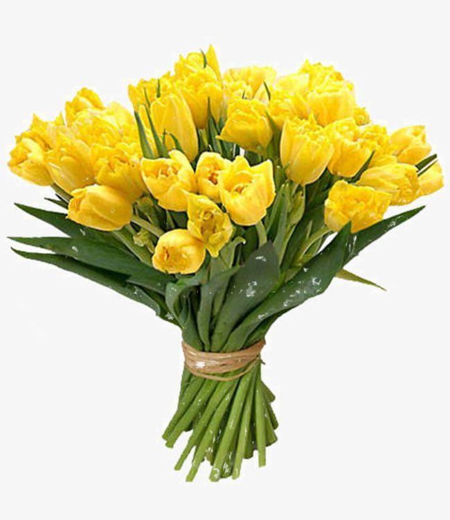 Flowers Flowers Free Matting Flowers Bouquet Boquette Flowers Flower Images